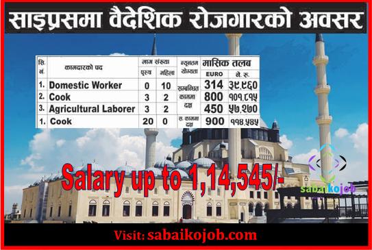 Job Vacancy at Cyprus Salary up to 114,545/-