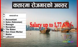 Vacancy at Qatar Salary up to 1,77,670/-