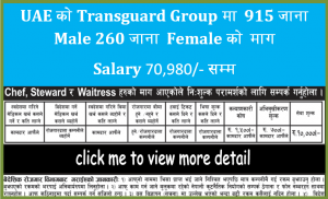 Read more about the article Vacancy for 1175 Male & Female at Transguard Group, UAE