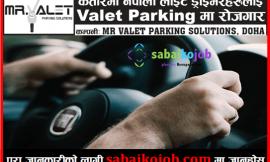 Job in Qatar | Vacancies for Driver at Valet Parking