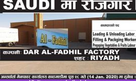 Job at Saudi | Dar Al-Fadhil Factory, Riyadh