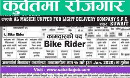 Job for Bike Rider in Kuwait
