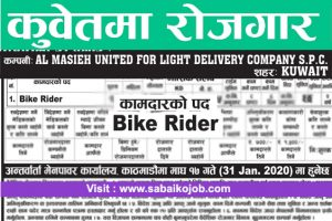 Read more about the article Job for Bike Rider in Kuwait