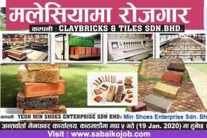 Read more about the article Job at Malaysia | Clay bricks & Tiles | Shoes Enterprise