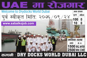 Read more about the article Job in UAE | Dry docks world dubai LLC