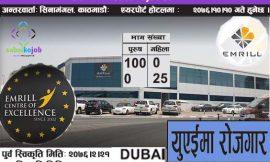 Job at UAE | Emrill Services LLC | DUBAI