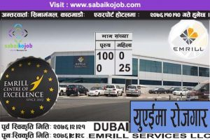 Read more about the article Job at UAE | Emrill Services LLC | DUBAI