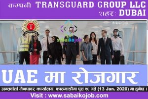 Read more about the article Job at Transguard Group LLc , Dubai