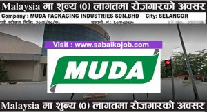 Read more about the article Operator   Muda packaging industries