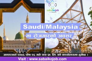 Read more about the article Job at Saudi & Malaysia