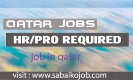 HR/PRO Required in Qatar
