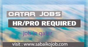 Read more about the article HR/PRO Required in Qatar