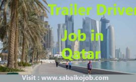Job for Trailer Driver in Qatar