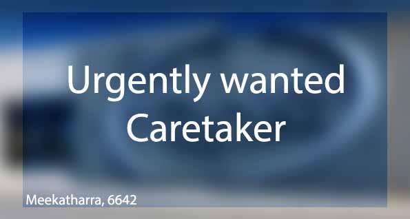 Urgently wanted caretaker