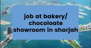 Read more about the article Job at Bakery/Chocolate Showroom in Sharjah
