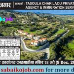 Job Vacancy in Cyprus
