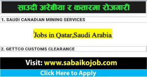Read more about the article Jobs in Saudi Arabia and Qatar