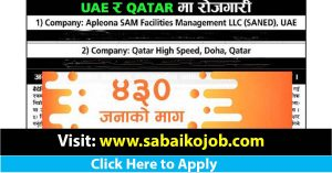 Read more about the article 430 candidate needed in UAE and Qatar