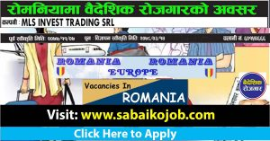 Read more about the article Job Vacancy at MLS INVEST TRADING SRL Romania