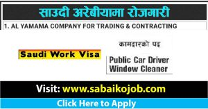 Read more about the article Public Car Driver | Window Cleaner