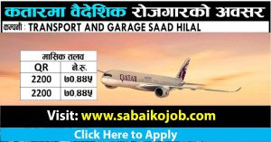 Read more about the article Vacancy at TRANSPORT AND GARAGE SAAD HILAL