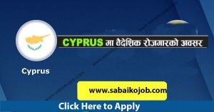 Read more about the article Employment opportunity in Cyprus