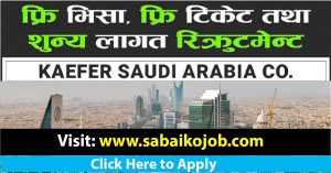 Read more about the article Apply Work Visa of Saudi Arabia at Zero Cost