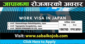 Read more about the article Job Opportunity to Work in Japan