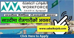 Read more about the article Job Vacancy at Workforce Saudi istaqdam co