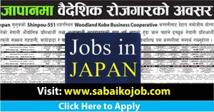 Read more about the article Care Giver Job for Male and Female in Japan