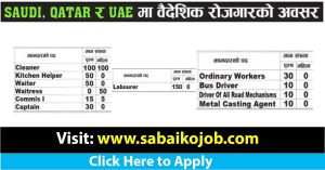 Read more about the article Job Opportunity in Saudi Qatar and UAE