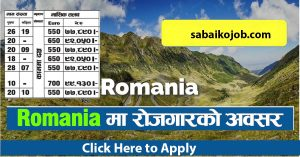 Read more about the article Job in Asia Recruiting Advisors SRL Romania