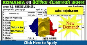 Read more about the article Romania New Demand