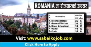 Read more about the article Career Opportunity in MULTI PROFESSIONAL RECRUITMENT SRL ROMANIA