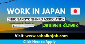 Read more about the article Work Permit for Japan