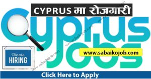 Read more about the article Vacancy at CY EMPLOYMENT Cyprus