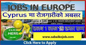 Read more about the article Job Vacancy at C AND C. PRIVATE EMPLOYMENT AGENCY CYPRUS