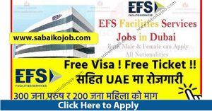 Read more about the article Free Visa/Free Ticket Get Jobs in UAE, 500 Candidates Required