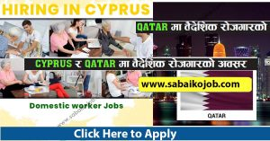 Read more about the article Work visa for Cyprus and Qatar