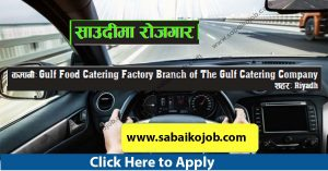 Read more about the article Public Car Driver