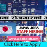 Looking For Career In Foreign Get Job In Japan, Salary: 1,72,000/-