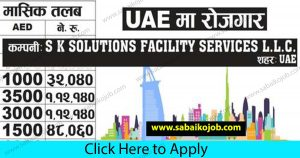 Read more about the article Demand for foreign employment in UAE, Salary: 1,12,140/-