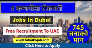 Read more about the article Looking For Career In Foreign Get Job In UAE, demand of 745 people