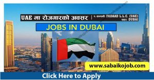 Read more about the article Job Alert ! Vacancy Announcement From Uae, Different 2 Company Jobs