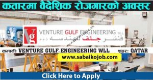 Read more about the article Attractive jobs in Qatar, VENTURE GULF ENGINEERING WLL