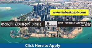 Read more about the article Job Alert ! Vacancy Announcement From Qatar, FOODVEST COMPANY
