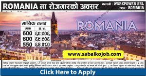 Read more about the article Job Vacancy at WORKPOWER SRL ROMANIA