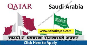 Read more about the article Looking For Career In Foreign Get Job In Qatar & Saudi Labour