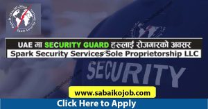 Read more about the article Work in Spark Security Services Sole Proprietorship LLC