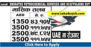 Read more about the article Demand for foreign employment in UAE, Salary: 1,11,755/-